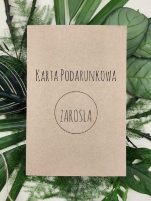 100 zł karta podarunkowa